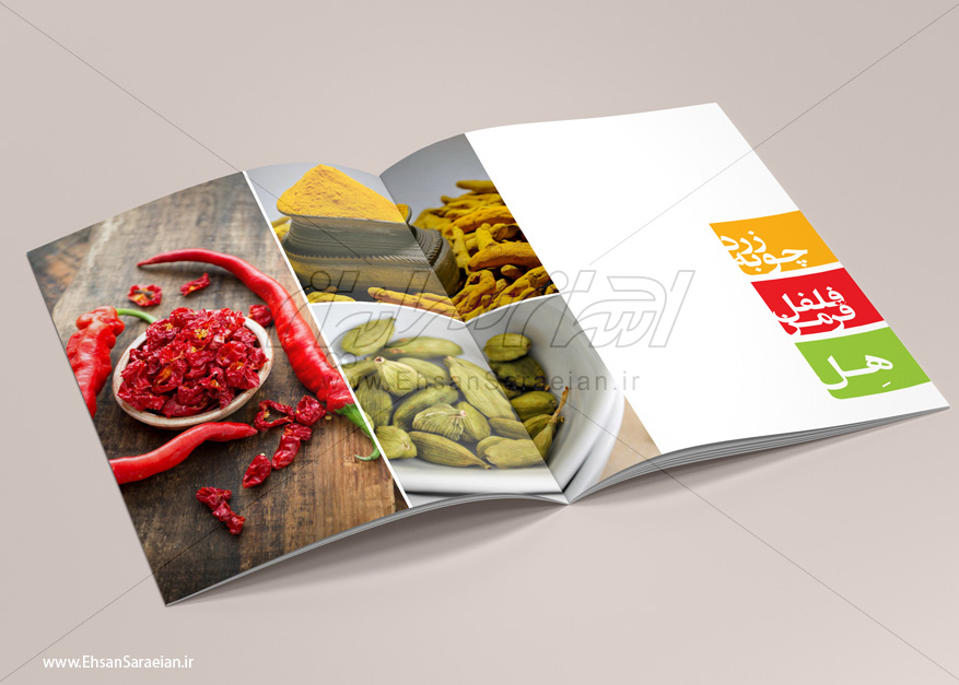 طراحی جنرال کاتالوگ شرکت آغاز دانه سپاهان /  design general Catalog the company Aghaz seed Sepahan